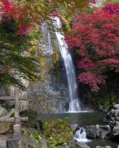 ✮ Waterfall - Osaka, Japan.