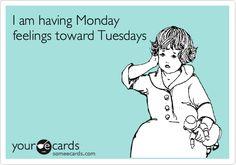 Funny Workplace Ecard: I am having Monday feelings toward Tuesdays.