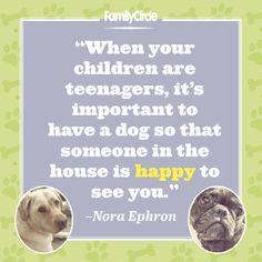 #fcwednesdaywisdom #quotes #humor #pets
