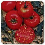 Organic Pruden�s Purple Tomato