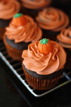 Halloween cupcakes with orange frosting, topped with a pumpkin.
