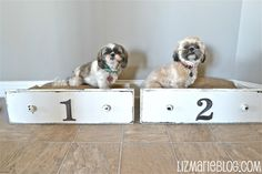 Doggie Beds made from old Dresser Drawers -- to cute!!