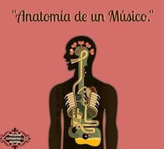 Anatomía de un músico