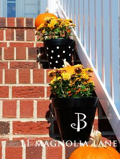 Spray paint terra cotta planters and add vinyl dots or monogram--easy Fall project!