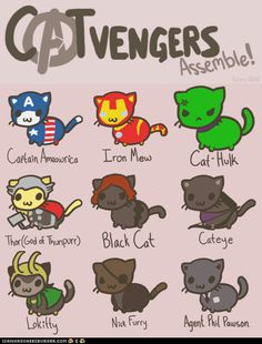 Catvengers Assemble! #cats