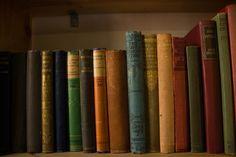 Exeter, september 2012.  Charity bookshop.