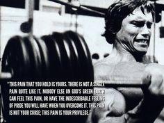 fit inspir, fit motiv, inspir quot, inspirational quotes, pain, arnold schwarzenegger, life quot, bodybuilding motivation, privileg