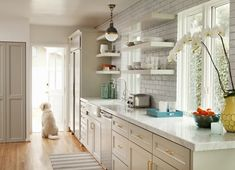 taupey gray color, style of cabinetry, light fixture