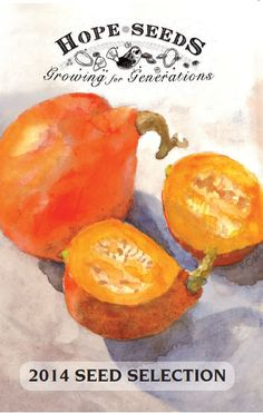 Organic Garden Seeds - Flowers Herbs Vegetable Seeds - Hope Seeds (Nova Scotia, Canada)