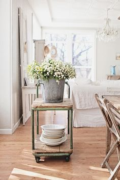 plant, white flowers, cottag, bucket, island