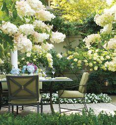 Garden in white