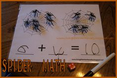 spiders kindergarten, bug