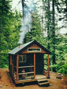 tiny cabin in the woods