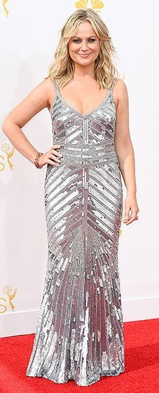 Knope 2014! Amy Poehler sizzled in a slinky silver gown at the 2014 Emmys.