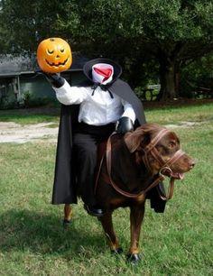 hilarious!!  pumpkin pumpkin pumpkin Headless horseman!
