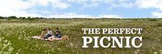 the perfect picnic generator - genius!