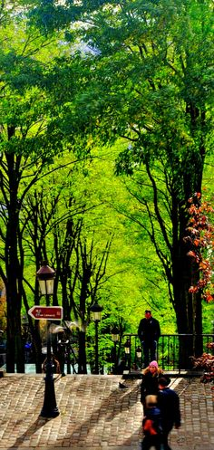 Green in the City, Paris, France