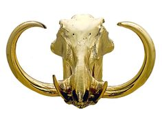 Human and Animal Skulls Dipped In 24kt Gold.