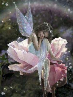 Flower Fairy...#faerie #fantasy #fairy #flowers #art #stars #art