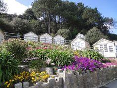 Canford Cliffs beach huts, #Poole, #Dorset