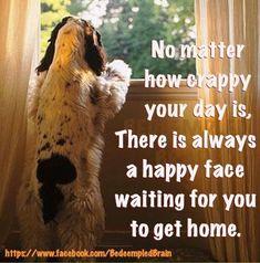 So True!  Adopt Today - Make yourself & an animal happy tomorrow!