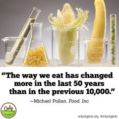 Are you aware of how the food we eat has changed in the last 20 years? One major change is the introduction of genetically engineered (GMO) foods into our food supply. Learn more about avoiding GMOs by choosing certified organic here: http://www.onlyorganic.org/get-facts #GMOs #OnlyOrganic #food