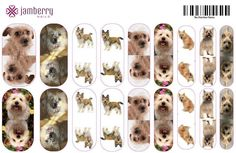Do you love your pets? Create custom photo nails of your dogs, cats, or critters here! Its fun and easy! Click on picture to create your own or go to www.bkimball.jamberrynails.net and select Nail Art Studio.