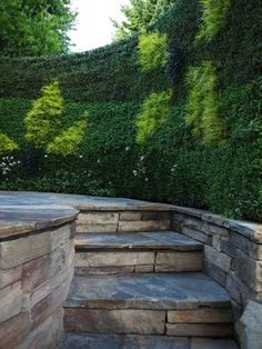 Spa Living Wall contemporary patio by Bright Green.