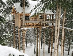 A dream tree house on several small trees.  Love the look of this!