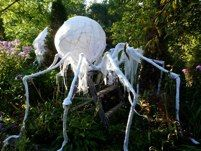 - Cheese cloth spider