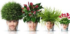 Turn Your Family Into Planters - There are many ways to use photos around your home, and this one combines two seemingly incongruous things — great family portraits and Chia Pets, or rather house plants! Get your little ones interested in indoor gardening with funny photo planters!
