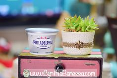Use a plastic container to make pots for planting succulents!