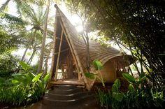 bamboo houses shape ibuku's green village community in thailand. Beautiful!