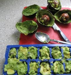 The RA Vegan: great tip for storing avocado for smoothies!