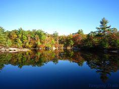 Fall foliage at Hidden Lake in Camp #Yawgoog.  A 2014 image by David R. Brierley.