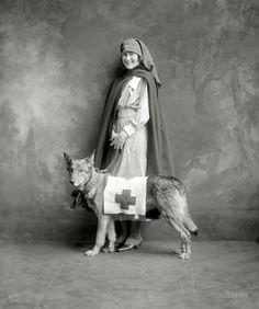 "Red Cross Dog. Washington, D.C., circa 1917. ""Miss Carter Mullikin, Holton-Arms School."""