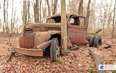 "Wooded old truck, Rusted Forgotten and left to rot in the woods.  Someone once said "" wow that is a nice truck ""  Not anymore!  Though I do feel it still has character"