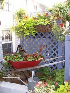 wheelbarrow water garden http://ourfairfieldhomeandgarden.com/a-trip-down-memory-lane-my-former-garden/