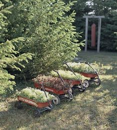 These are pretty cool...makes it so easy to mow under...just move them out of the way.