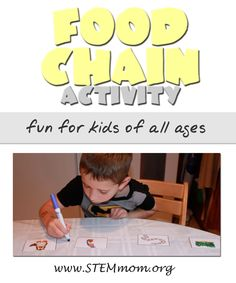 Food Chain Activity for kids foods, chain activ, activities for kids, food chains, homeschool, teach, top blog, scienc