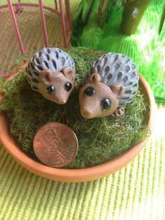 I love etsy for little treasures like this. These would be super cute in a terrarium. Hedgehog pair by TheWhiteSquirrelNE on Etsy