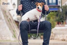 Maggie with wild combination! Solid Strawberry & Cambrils leash! SHOP NOW http://brottdog.com/es/textura/81-strawberry-cambrils.html