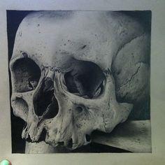 Skull Drawing by lynseyhayton