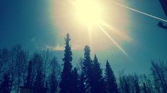 Taken yesterday (5/20/2013) on the #UAF campus! #summer #sun #Alaska #Fairbanks