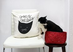 Crazy Cat Lady Throw Cushion Cover 18 x 18 inch from etsy