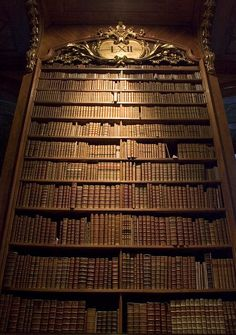Now *these* are bookshelves.  - from the National Library of Austria in Vienna