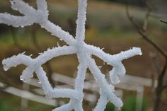 Borax Snowflakes and Icicles