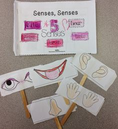 FUN FRIDAY and 50% off Five Senses Unit#soltrainlearning#five senses#TPT#science#ELA This fun unit has everything y'all need to teach Five Senses. There is a rocking song that will get your kiddos moving, books, puppets,science experiments,sorts, and printables. Read more.