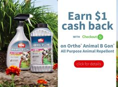 Ortho Repellent $1.0