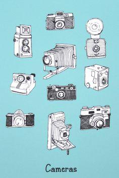 Vintage cameras.